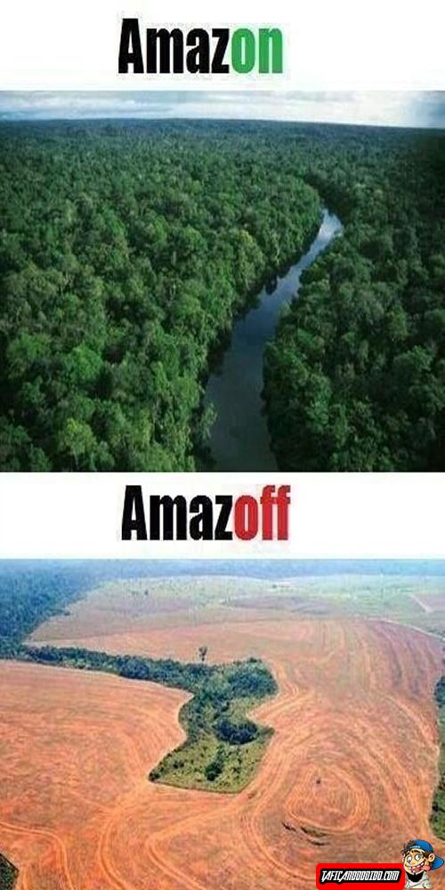 Amazon x Amazoff